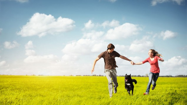 a young couple holding hands and running through a grassy field on a sunny day, and their black dog is running between them